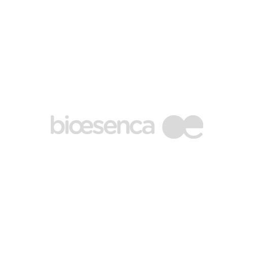 Ashwaganda- Ašvaganda